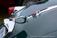 Lyman Orchards Jaguar Car Show - Photo # 074
