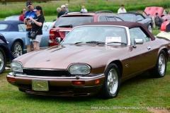 Lyman Orchards Jaguar Car Show - Photo # 080