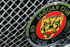 Lyman Orchards Jaguar Car Show - Photo # 093