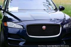 Lyman Orchards Jaguar Car Show - Photo # 099