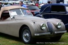 Lyman Orchards Jaguar Car Show - Photo # 101