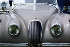 Lyman Orchards Jaguar Car Show - Photo # 102