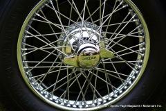 Lyman Orchards Jaguar Car Show - Photo # 107