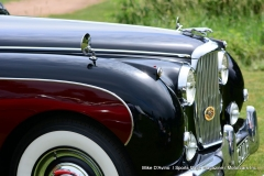 Lyman Orchards Jaguar Car Show - Photo # 117