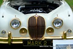 Lyman Orchards Jaguar Car Show - Photo # 131