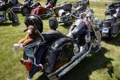 The Dream Ride Experience, the Motorcycles, Part 2, (13)