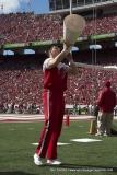 Gallery NCAA Cheerleading: Gameday With the Wisconsin Badger Spirit Team
