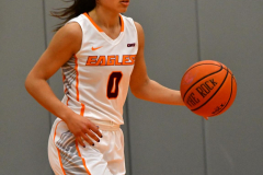 Gallery NCAA DII Women's Basketball - Post 63 vs. Univ. of the Sciences 75 - Photo # (81)