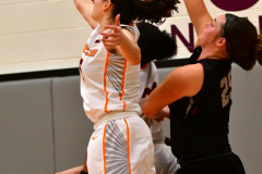 Gallery NCAA DII Women's Basketball - Post 63 vs. Univ. of the Sciences 75 - Photo # (99)