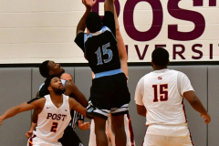 NCAA Dll Basketball; Post vs. Holy Family - Photo # 466