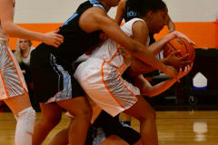 NCAA Dll Basketball; Post vs. Holy Family - Photo # 101
