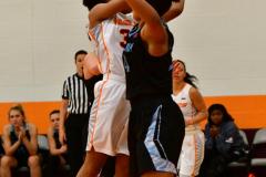 NCAA Dll Basketball; Post vs. Holy Family - Photo # 109