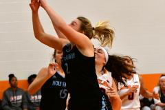 NCAA Dll Basketball; Post vs. Holy Family - Photo # 172