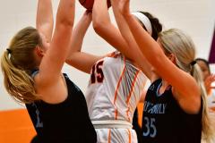 NCAA Dll Basketball; Post vs. Holy Family - Photo # 179