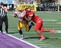 NCAA Football Buffalo Wild Wings Citrus Bowl - LSU 29 vs. Louisville 9 - Gallery 1 - Photo (112)