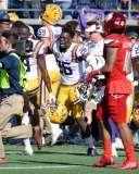 NCAA Football Buffalo Wild Wings Citrus Bowl - LSU 29 vs. Louisville 9 - Gallery 1 - Photo (130)