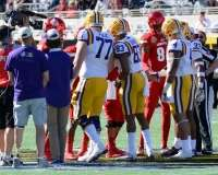 NCAA Football Buffalo Wild Wings Citrus Bowl - LSU 29 vs. Louisville 9 - Gallery 1 - Photo (22)