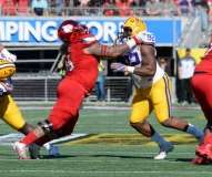 NCAA Football Buffalo Wild Wings Citrus Bowl - LSU 29 vs. Louisville 9 - Gallery 1 - Photo (27)