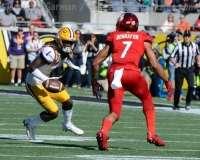 NCAA Football Buffalo Wild Wings Citrus Bowl - LSU 29 vs. Louisville 9 - Gallery 1 - Photo (30)