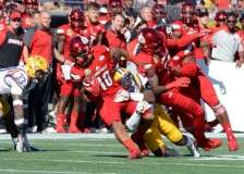 NCAA Football Buffalo Wild Wings Citrus Bowl - LSU 29 vs. Louisville 9 - Gallery 1 - Photo (32)