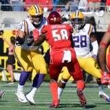 NCAA Football Buffalo Wild Wings Citrus Bowl - LSU 29 vs. Louisville 9 - Gallery 1 - Photo (41)