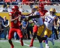 NCAA Football Buffalo Wild Wings Citrus Bowl - LSU 29 vs. Louisville 9 - Gallery 1 - Photo (46)