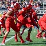 NCAA Football Buffalo Wild Wings Citrus Bowl - LSU 29 vs. Louisville 9 - Gallery 1 - Photo (49)
