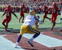 NCAA Football Buffalo Wild Wings Citrus Bowl - LSU 29 vs. Louisville 9 - Gallery 1 - Photo (66)