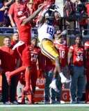NCAA Football Buffalo Wild Wings Citrus Bowl - LSU 29 vs. Louisville 9 - Gallery 1 - Photo (99)