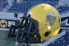 NCAA Football Buffalo Wild Wings Citrus Bowl - LSU 29 vs. Louisville 9 - Gallery 2 - Photo (4)