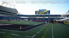 NCAA Football Buffalo Wild Wings Citrus Bowl - LSU 29 vs. Louisville 9 - Gallery 2 - Photo (5)