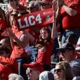 NCAA Football Buffalo Wild Wings Citrus Bowl - LSU 29 vs. Louisville 9 - Gallery 2 - Photo (51)