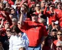 NCAA Football Buffalo Wild Wings Citrus Bowl - LSU 29 vs. Louisville 9 - Gallery 2 - Photo (54)