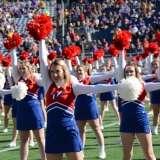 NCAA Football Buffalo Wild Wings Citrus Bowl - LSU 29 vs. Louisville 9 - Gallery 2 - Photo (59)