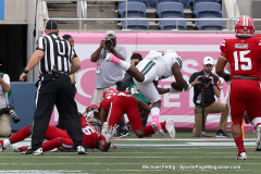 Gallery- NCAA Football- AutoNation Cure Bowl- Tulane 41 vs. Louisiana 24