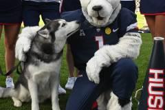 NCAA-Football-Connecticut-24-vs.-Illinois-31-20