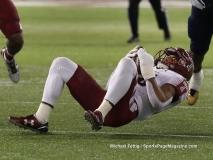 Gallery- NCAA Football- Gasparilla Bowl- Temple 28 vs FIU 3