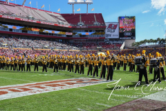 NCAA Football - Outback Bowl - Iowa 27 vs. Mississippi State 22 (113)