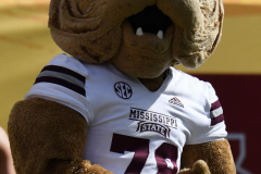 NCAA Football - Outback Bowl - Iowa 27 vs. Mississippi State 22 (75)