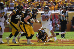 NCAA Football - Outback Bowl - Iowa 27 vs. Mississippi State 22 (79)