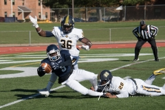 NCAA Football - Senior Day - SCSU 34 vs. Pace 0 (115)