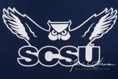 NCAA Football - SCSU 22 vs. Gannon University 55 (1)