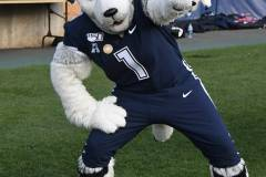 NCAA-Football-UConn-24-vs.-ECU-31-130