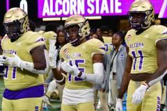 Gallery-NCAA-FTBL-Celebration-Bowl-NC-AT-64-vs.-Alcorn-St.-44-Photo-Number-118