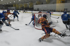 NCAA Hockey - Post University 3 vs. Assumption College 2 - Photo (111)