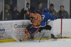 NCAA Hockey - Post University 3 vs. Assumption College 2 - Photo (119)