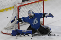 NCAA Hockey - Post University 3 vs. Assumption College 2 - Photo (126)