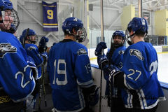 NCAA Hockey - Post University 3 vs. Assumption College 2 - Photo (140)