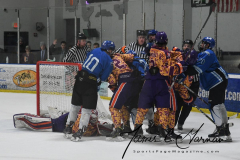 NCAA Hockey - Post University 3 vs. Assumption College 2 - Photo (170)