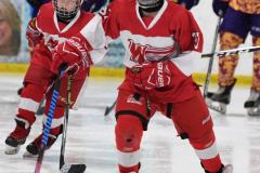 NCAA Hockey - Post University 3 vs. Assumption College 2 - Photo (27)